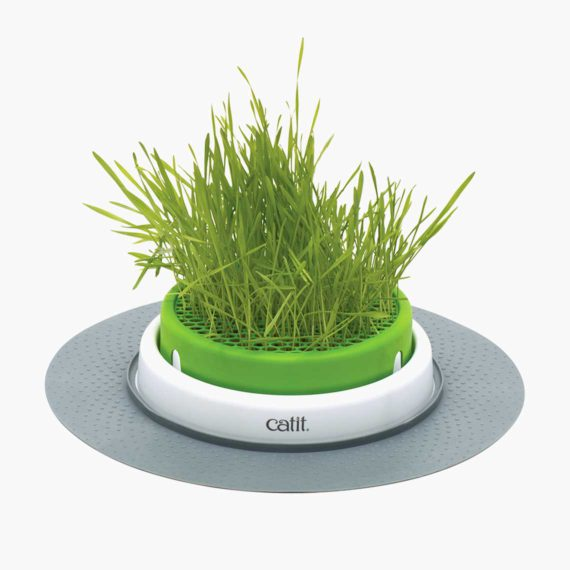 43161W - Senses 2.0 Grass Planter