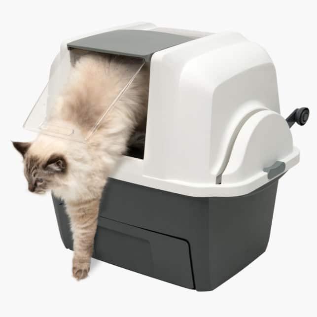 SmartSift und Katze