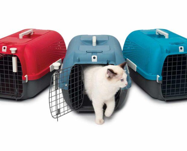 Cage de transport Catit – Partir de la bonne patte - cover