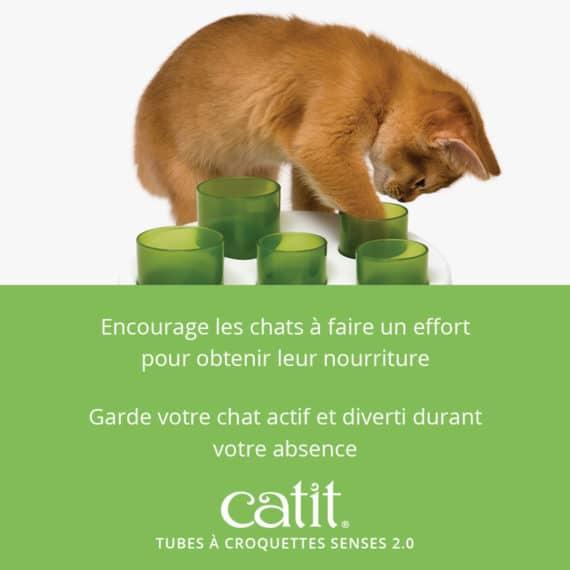 Tubes à croquettes Senses 2.0 Catit - Encourage les chats à faire un effort pour obtenir leur nourriture et garde votre chat actif et diverti durant votre absence