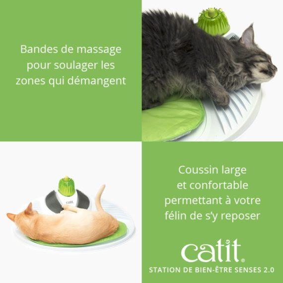 Station de Bien Être Senses 2.0 Catit – Bandes de massage pour soulanger les zones qui démangent. Coussin large et confortable permettant à votre félin de s'y reposer