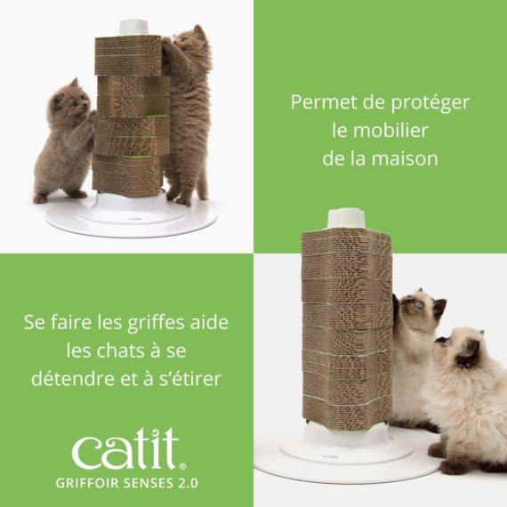 Griffoir Senses 2.0 Catit permet protéger le mobilier de la maison. Se faire les griffes aide les chats à se détendre et à s'étirer