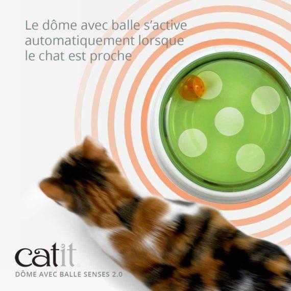 Dôme avec balle Senses 2.0 Catit - Le dôme avec balle s'active automatiquement lorsque le chat est proche