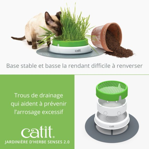 Jardinière d'herbe Senses 2.0 Catit base stable et basse la rendant difficile à renverser et a trous de drainage qui aident à prévenir l'arrosage excessif