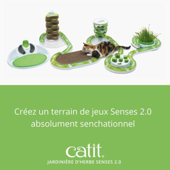 Créez un terrain de jeux Senses 2.0 absolument senchationnel avec la jardinière d'herbe Senses 2.0 Catit