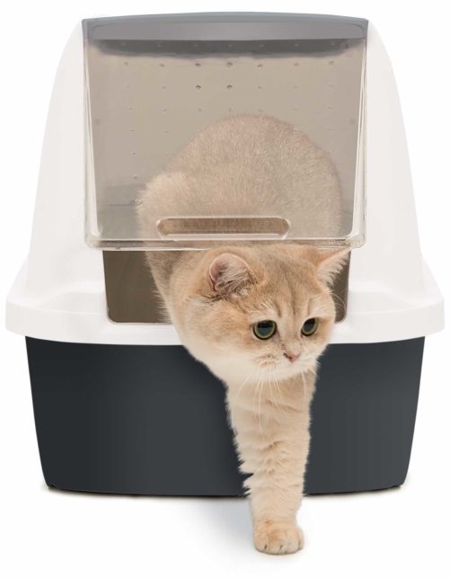 Notre litière ne colle pas au bac ni à la pelle, ce qui rend le nettoyage et le ramassage beaucoup plus facile et rapide