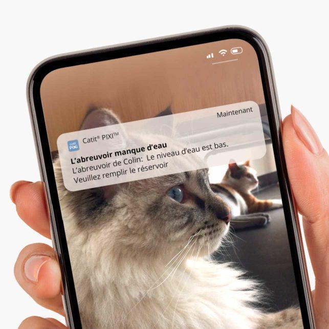 Activez les notifications dans l'appli pour recevoir des messages